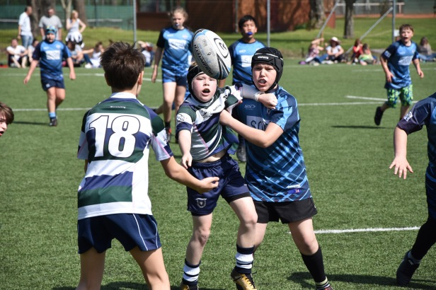 Rugby school Bratislava