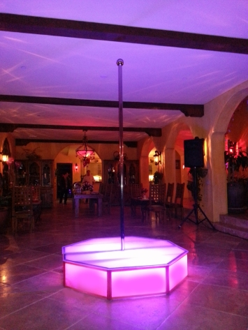 Renting-Stripper-Poles-for-Your-Bachelorette-Party